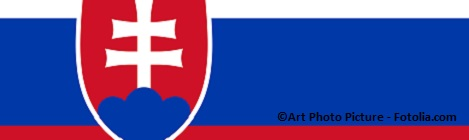 Slovakia Flag True Colors
